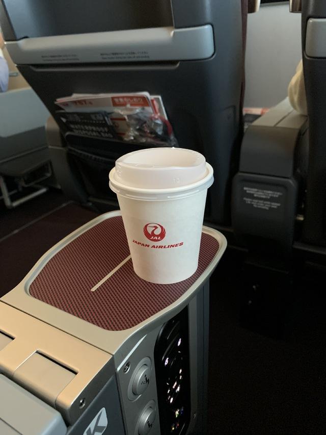 JL325の搭乗レビュー写真