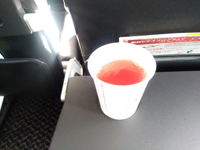 JL2201の搭乗レビュー写真