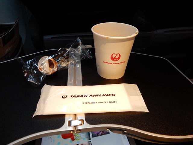 JL133の搭乗レビュー写真