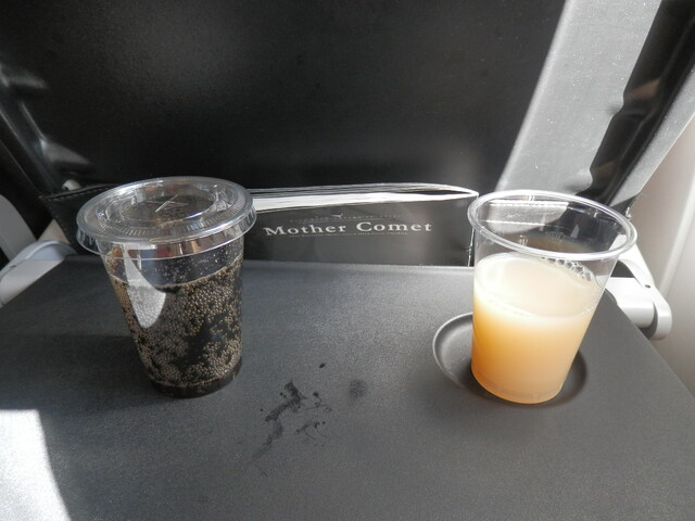 SFJ24の搭乗レビュー写真