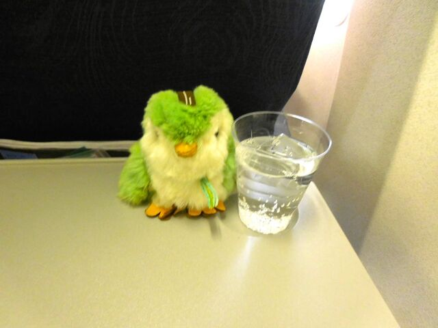 CA810の搭乗レビュー写真