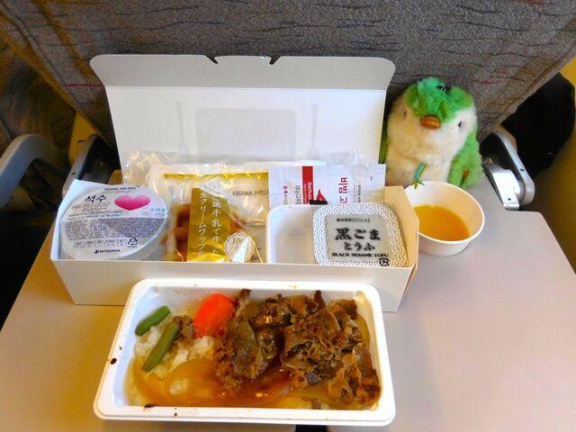 OZ101の搭乗レビュー写真