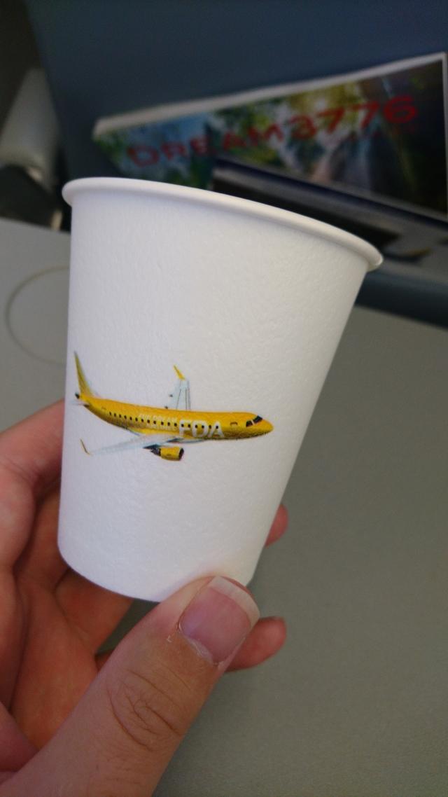 JH302の搭乗レビュー写真