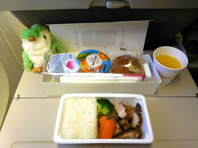 OZ106の搭乗レビュー写真