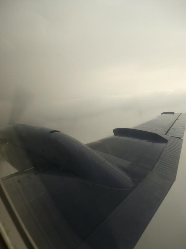 8P104の搭乗レビュー写真